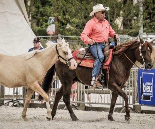 équitation américaine