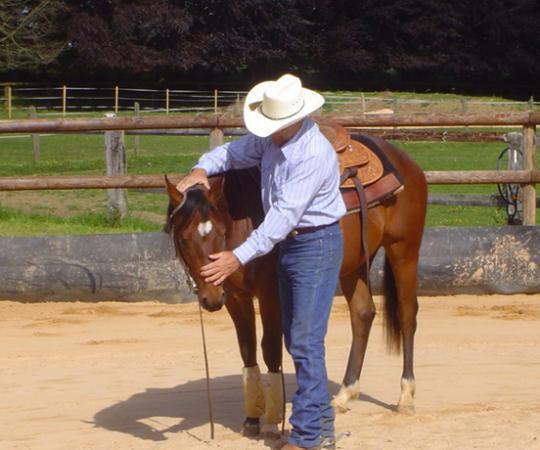 entrainement avec un cheval